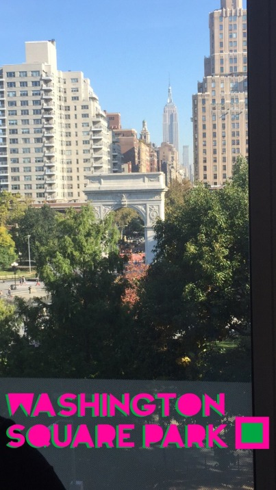 View from the NYU Kimmel Center